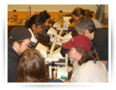Pathology Club members looking through microscopes