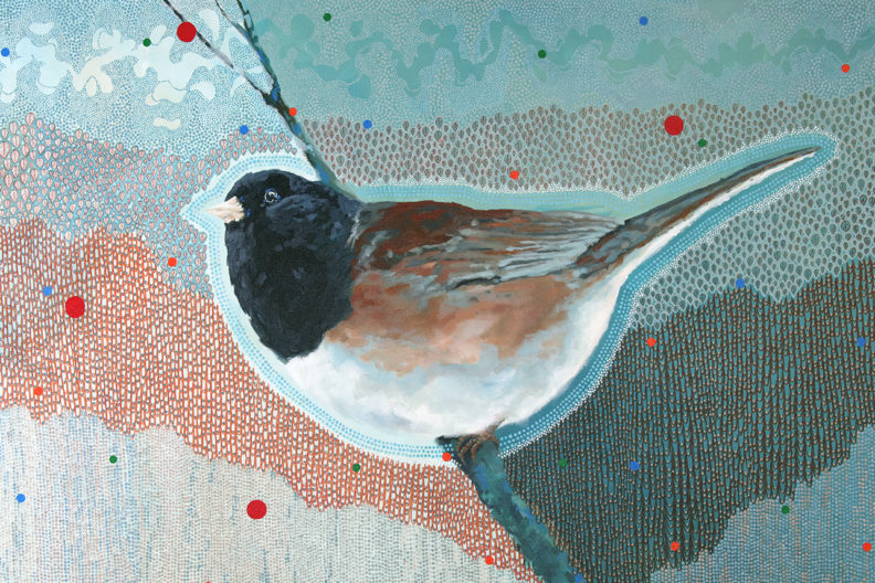 Junco: Shifting Seasons