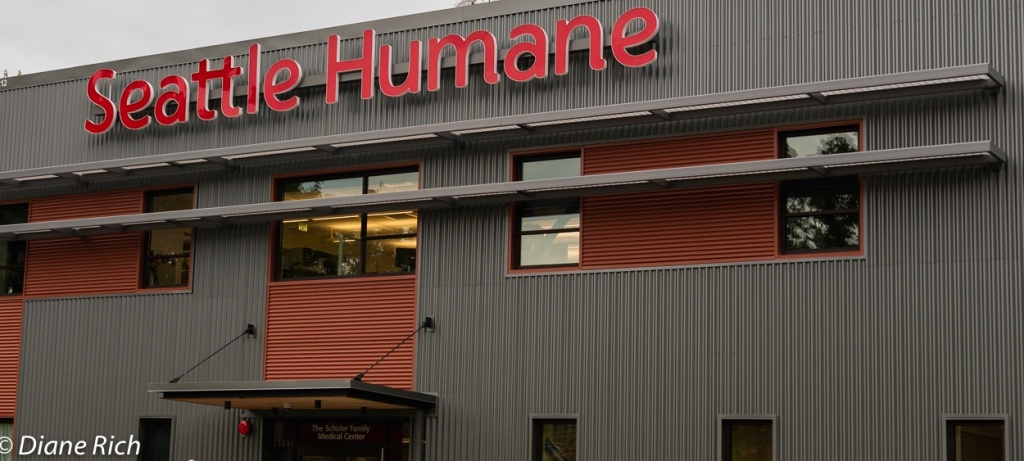 New Seattle Humane building